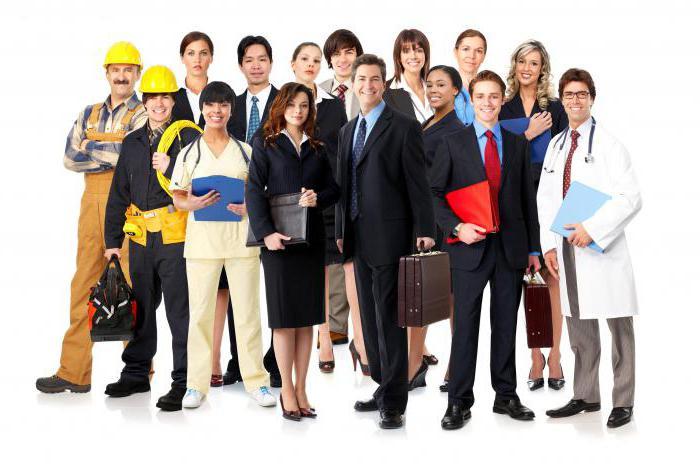 Все сотрудники должны быть оформлены согласно ТК РФ