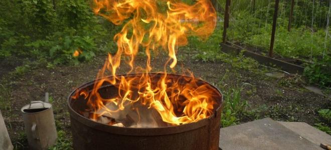 Куда жаловаться на незаконное сжигание мусора