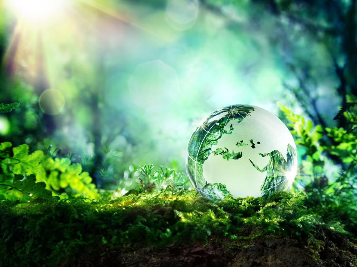 Охрана окружающей среды регулируется законом
