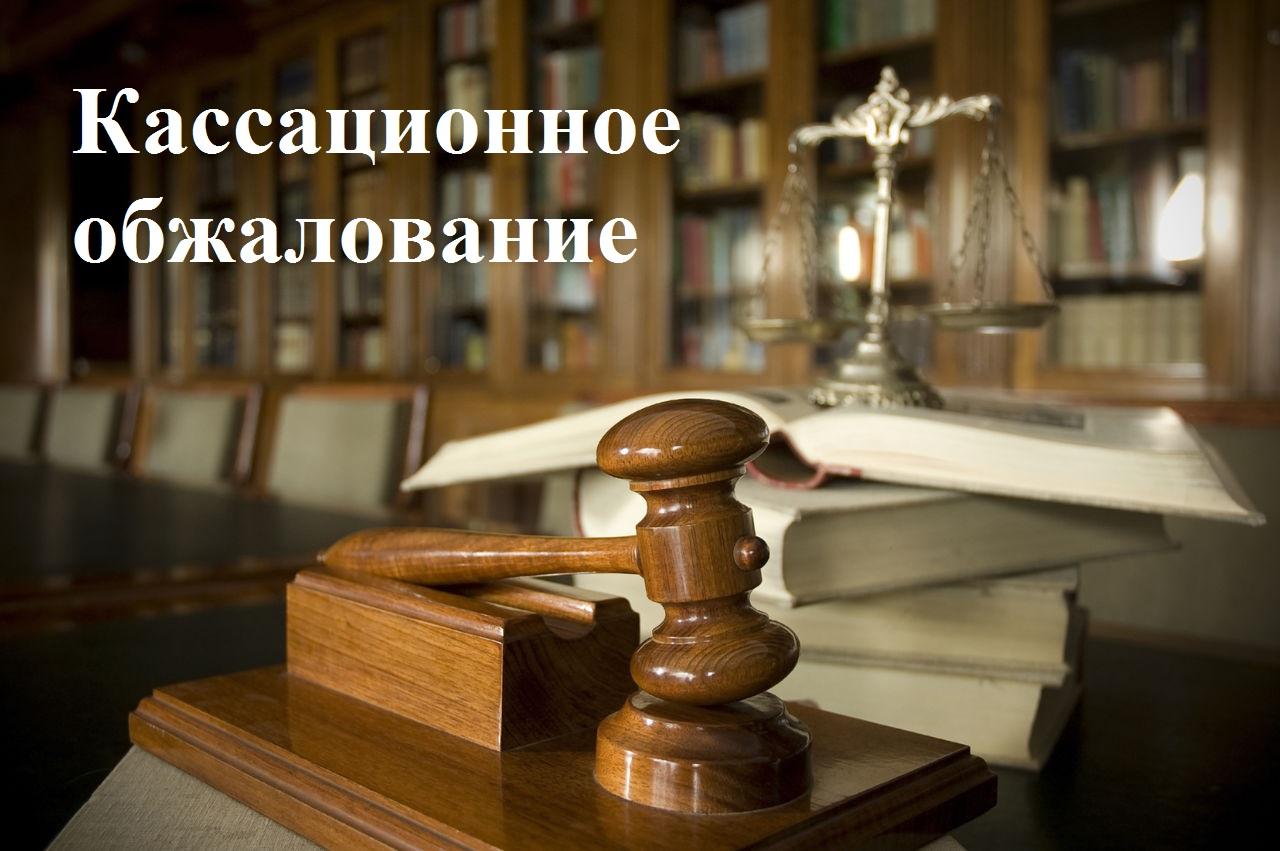 Кассационная жалоба по гражданскому делу образец, как подать кассацию на решение суда