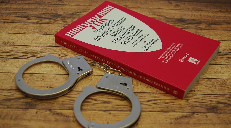 Досудебка в уголовном деле