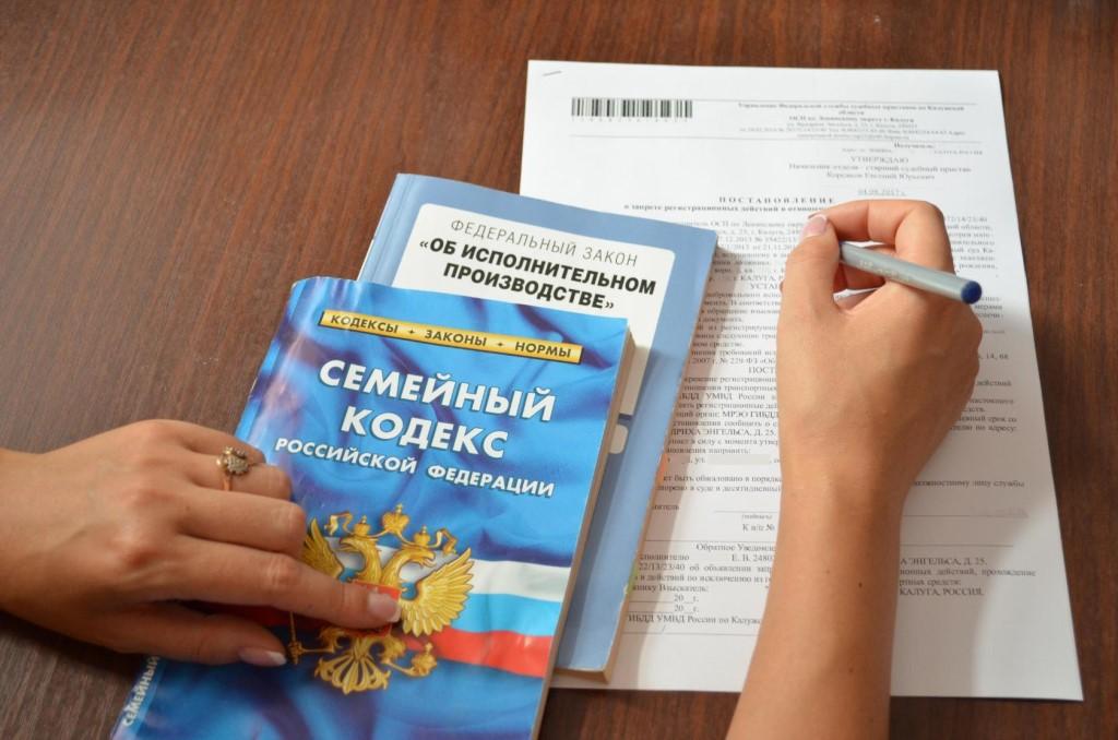 Семейный кодекс РФ 2019: алименты по Семейному кодексу