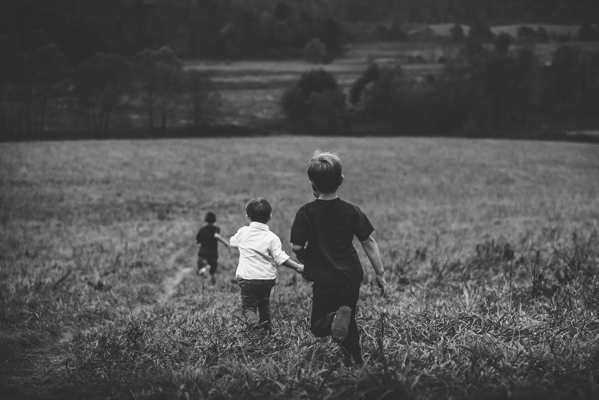 Соцподдержка многодетных семей