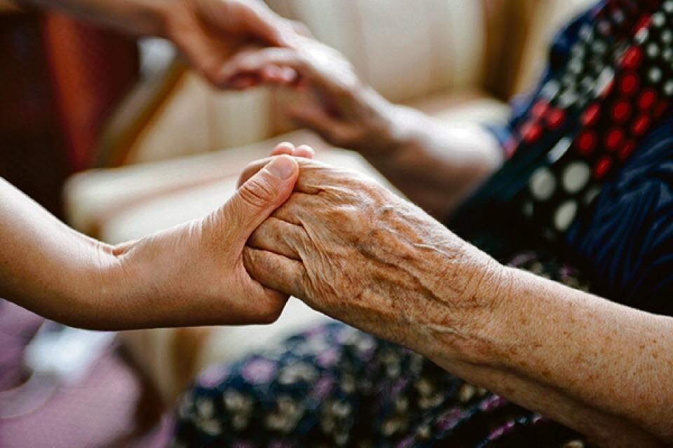 Имеют ли внуки право на наследство бабушки если живы дети